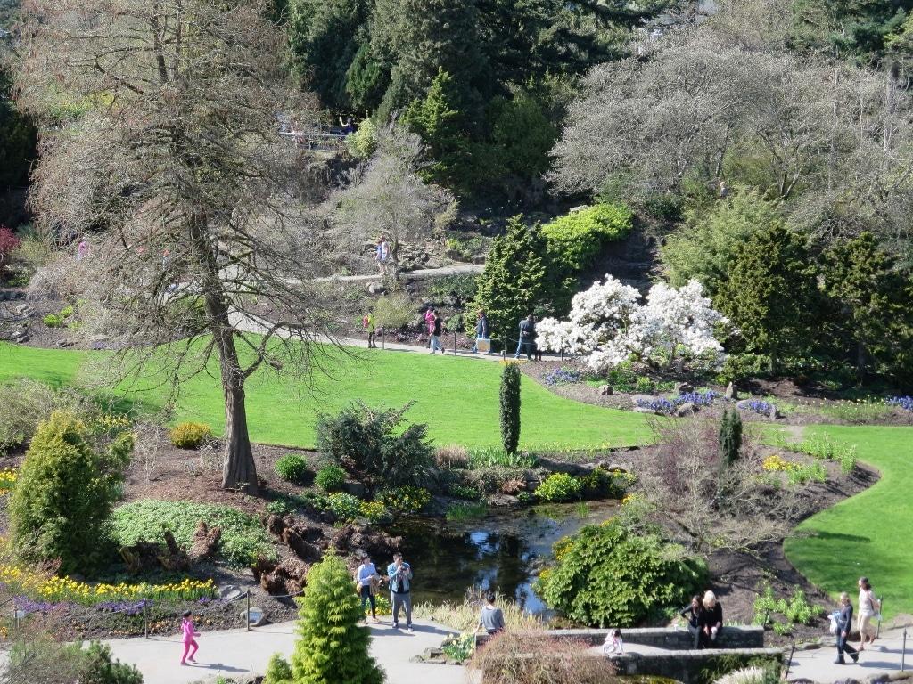 Queen Elizabeth Park (34) (1024×768)