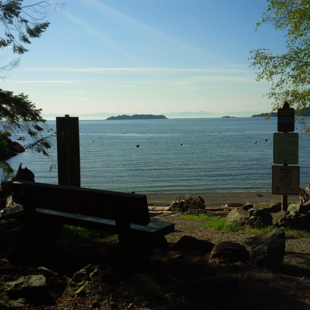 Travelling With Your Dog to Bowen Island, BC | The Dog Network