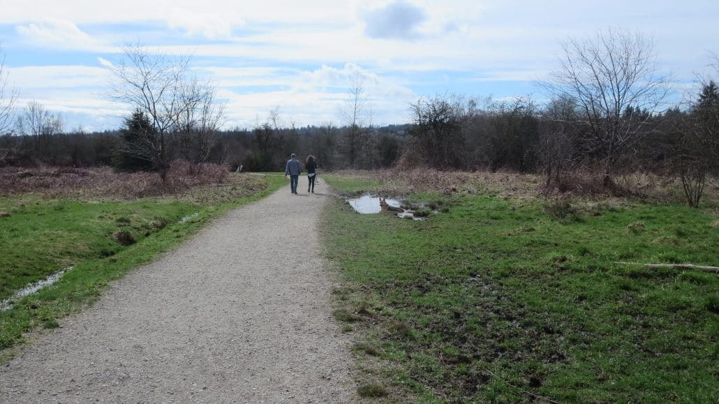 Tynehead Regional Park, Surrey, BC - Trail