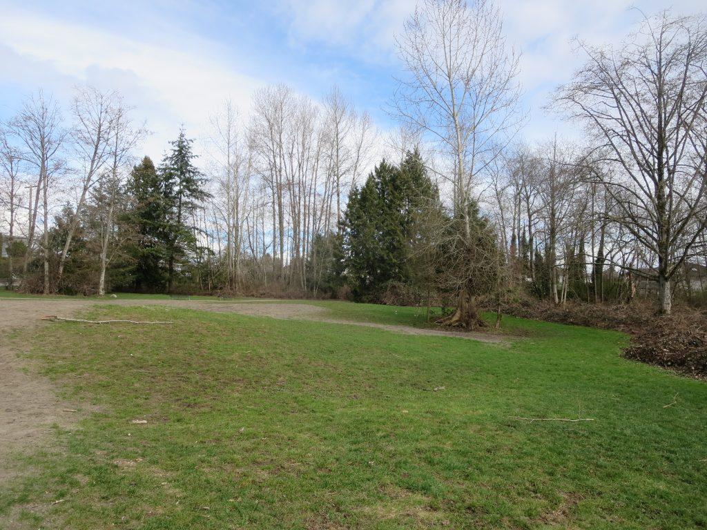 Freedom Off-Leash Dog Park, Surrey, BC
