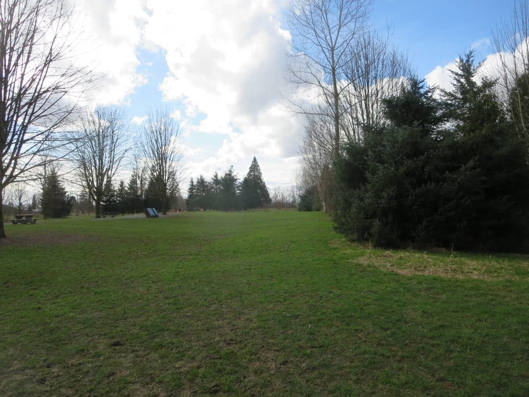 Derby Reach Regional Off-Leash Dog Park, Langley, BC (865)