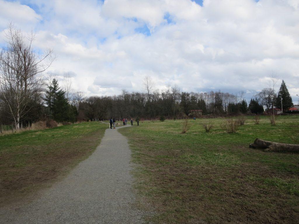 Derby Reach Regional Off-Leash Dog Park, Langley, BC (869)