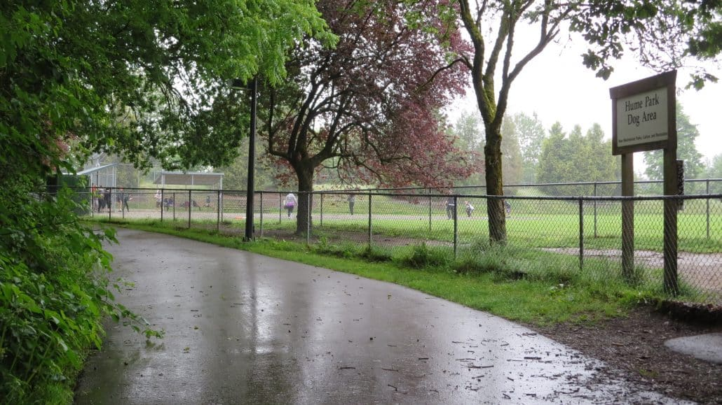 Hume Park Off-Leash Dog Park, New Westminster, BC