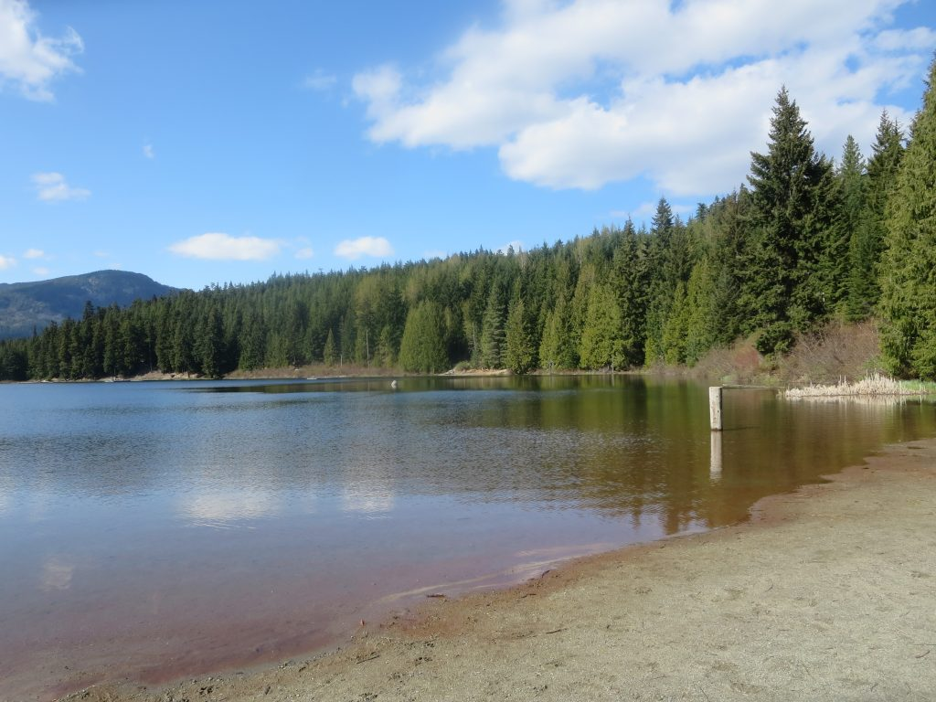 Lost Lake Park Off-Leash Dog Park (Canine Cove), Whistler, BC