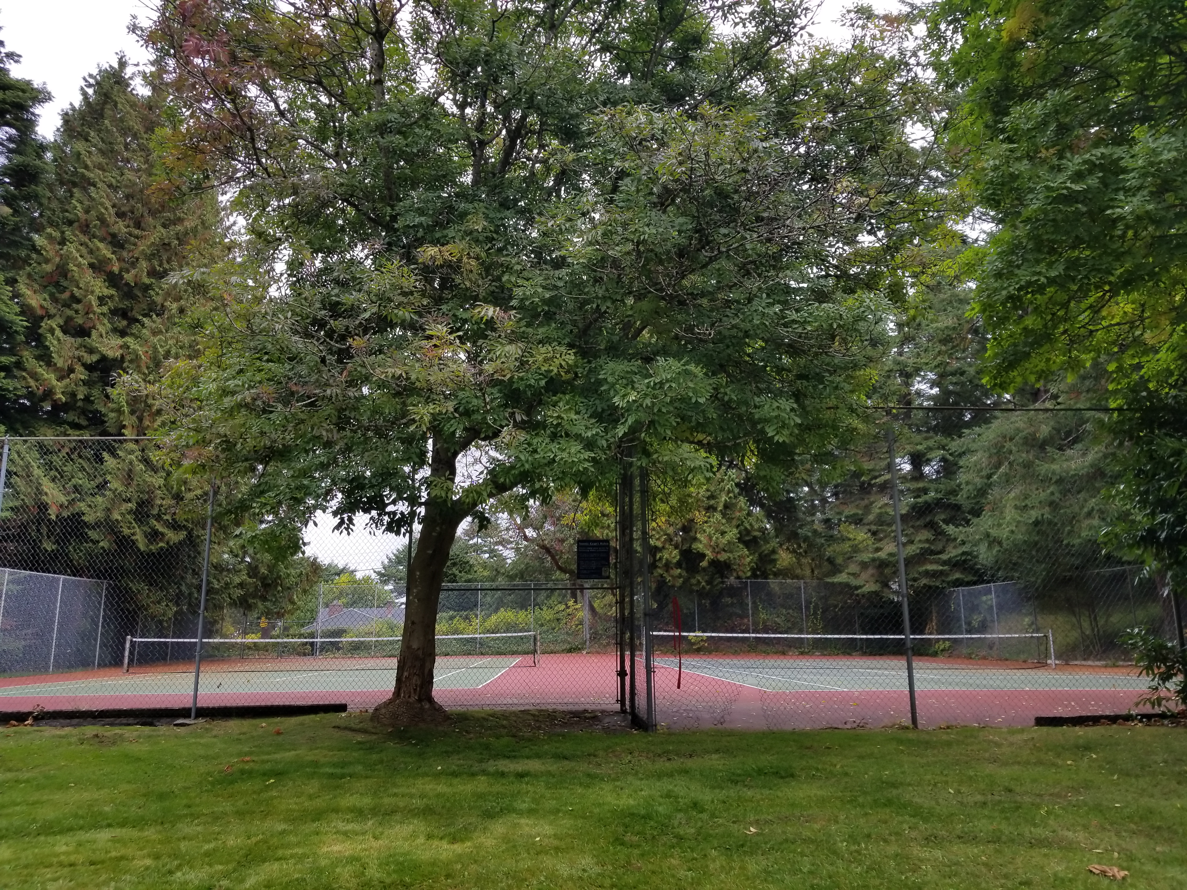 Whytecliff Park, West Vancouver, BC – Tennis Courts