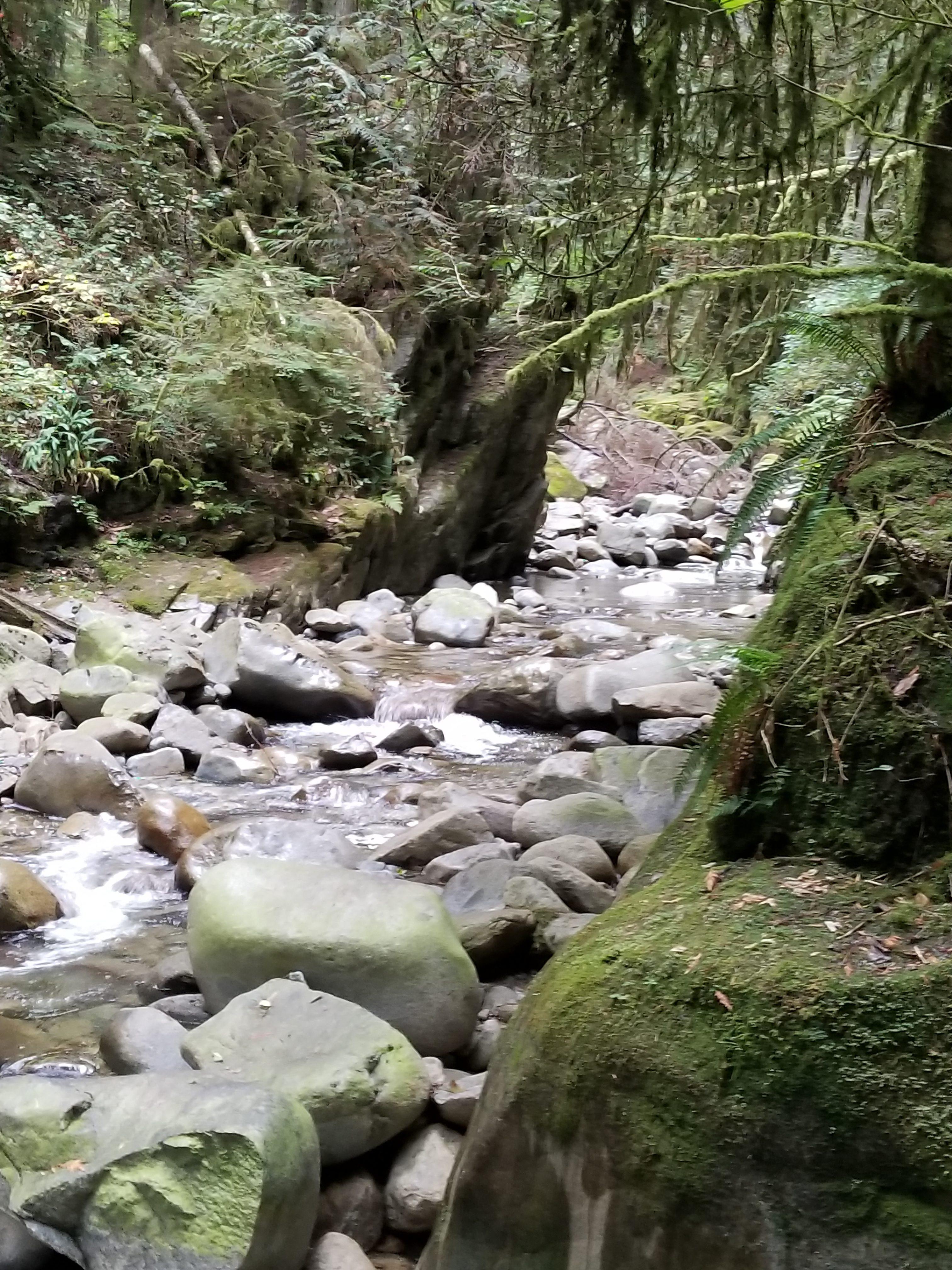Cypress Falls Park, West Vancouver, BC - River