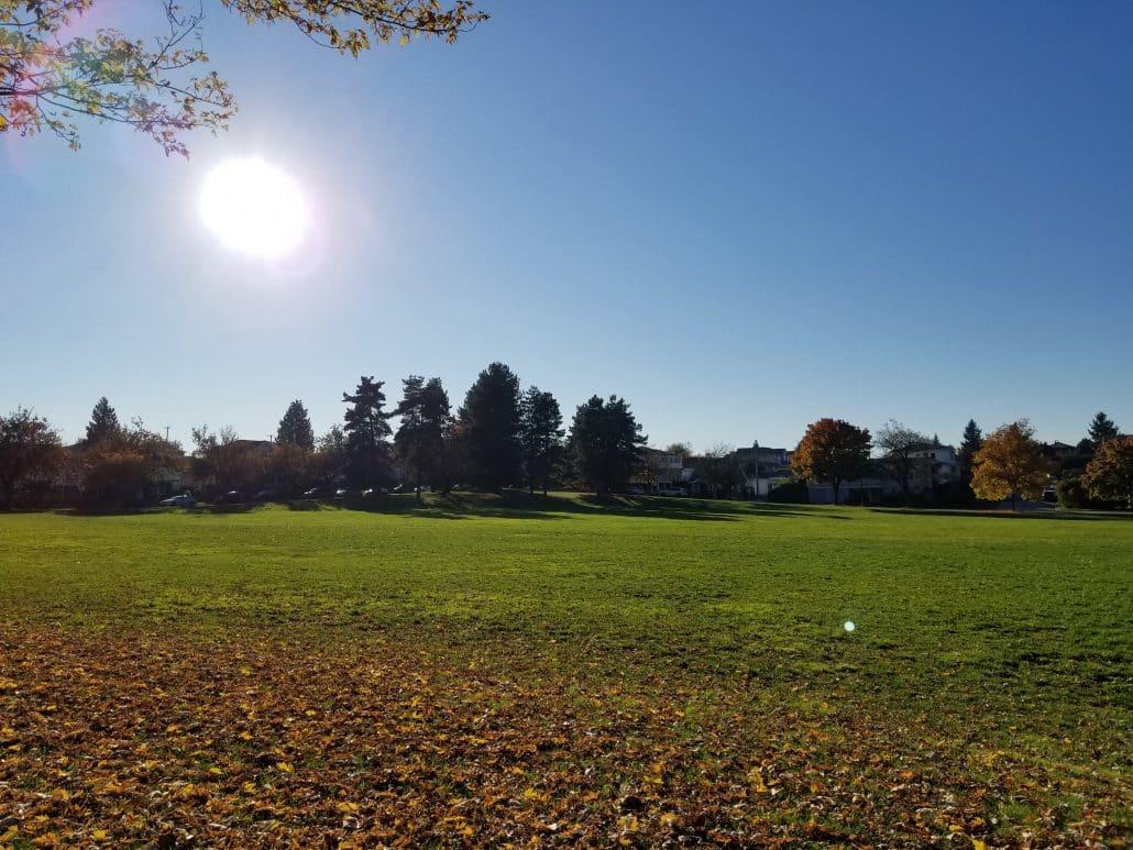 Killarney Off-Leash Dog Park, Vancouver, BC (7)