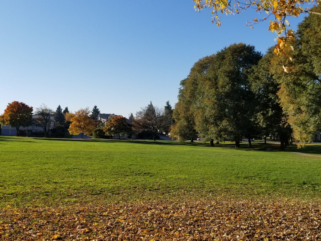 Killarney Off-Leash Dog Park, Vancouver, BC (1)