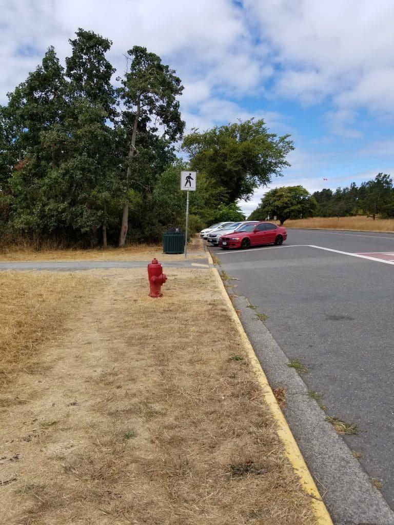 Beacon Hill Park/Dallas Road
