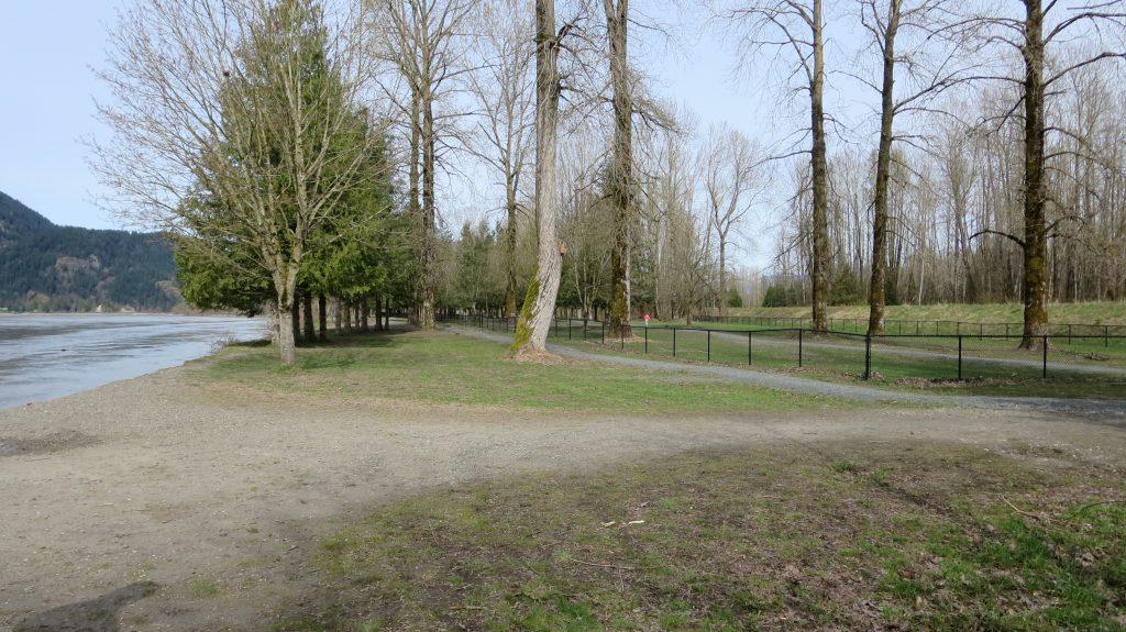 Island 22 Regional Off-Leash Dog Park - Chilliwack - BC (157)