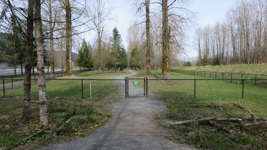 Island 22 Regional Off-Leash Dog Park - Chilliwack - BC (162)