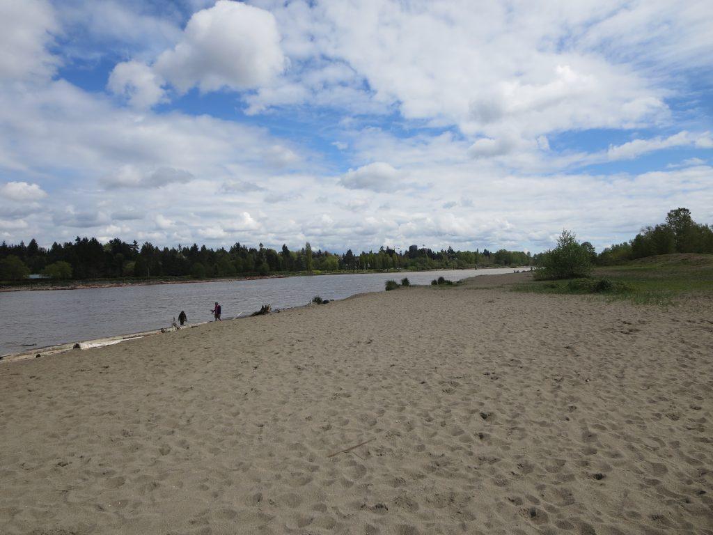 McDonald Beach Off-Leash Dog Park, Richmond, BC