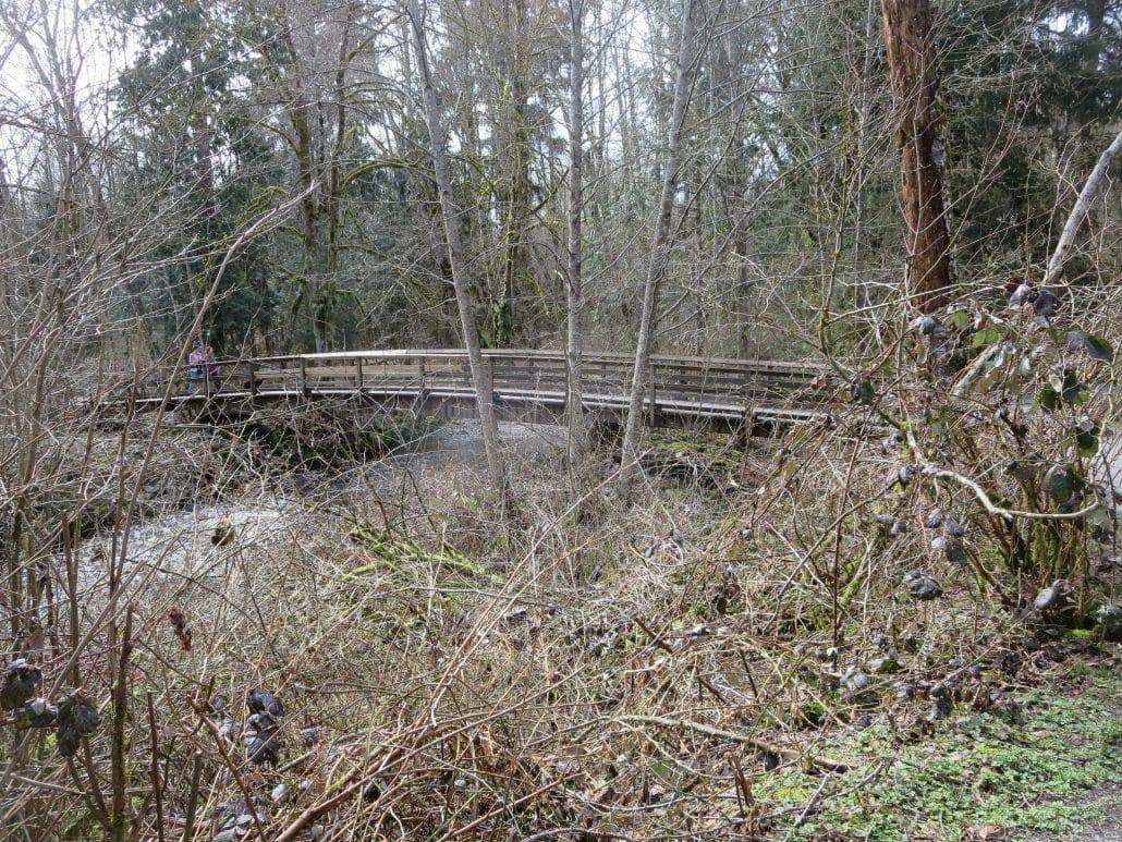 Tynehead Regional Park, Surrey, BC – Foot Bridge