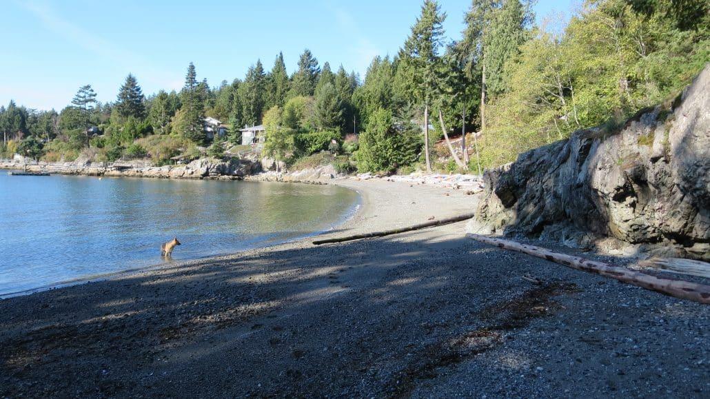 Bowen Bay Beach, Bowen Island, BC (22)