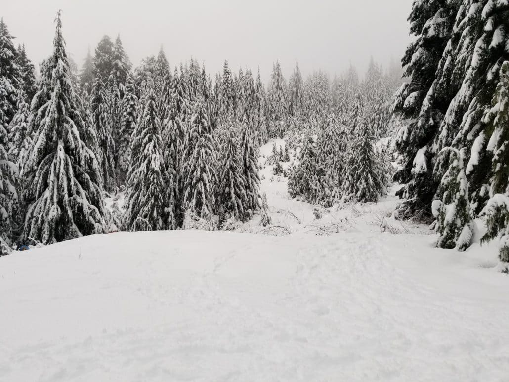 Cypress Mountain Cabin Area, West Vancouver, BC (14)