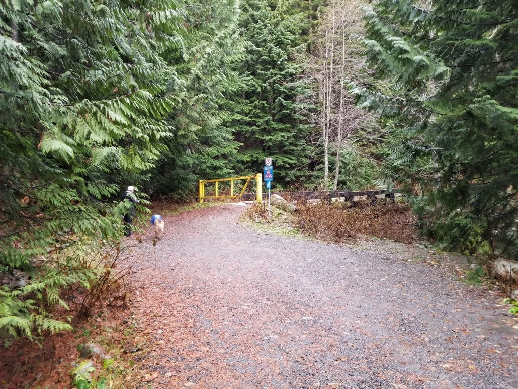 Cypress Mountain Cabin Area, West Vancouver, BC (4)
