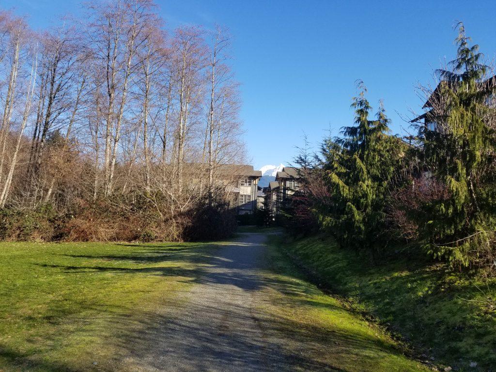 Eaglewind Off-Leash Dog Park, Squamish, BC (202)