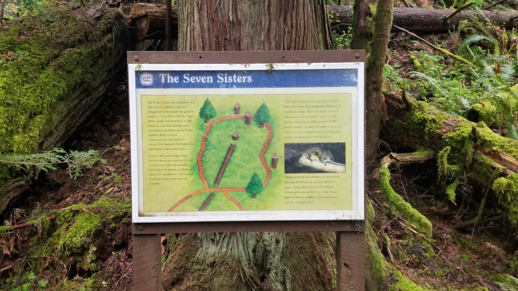 Seven Sisters Trail (18)
