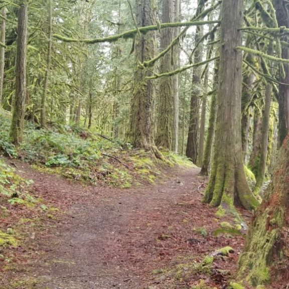 Seven Sisters Trail (7)