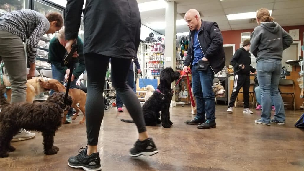 Simply Natural Raw Pet Food Store - Puppy Class (2) -2018-March