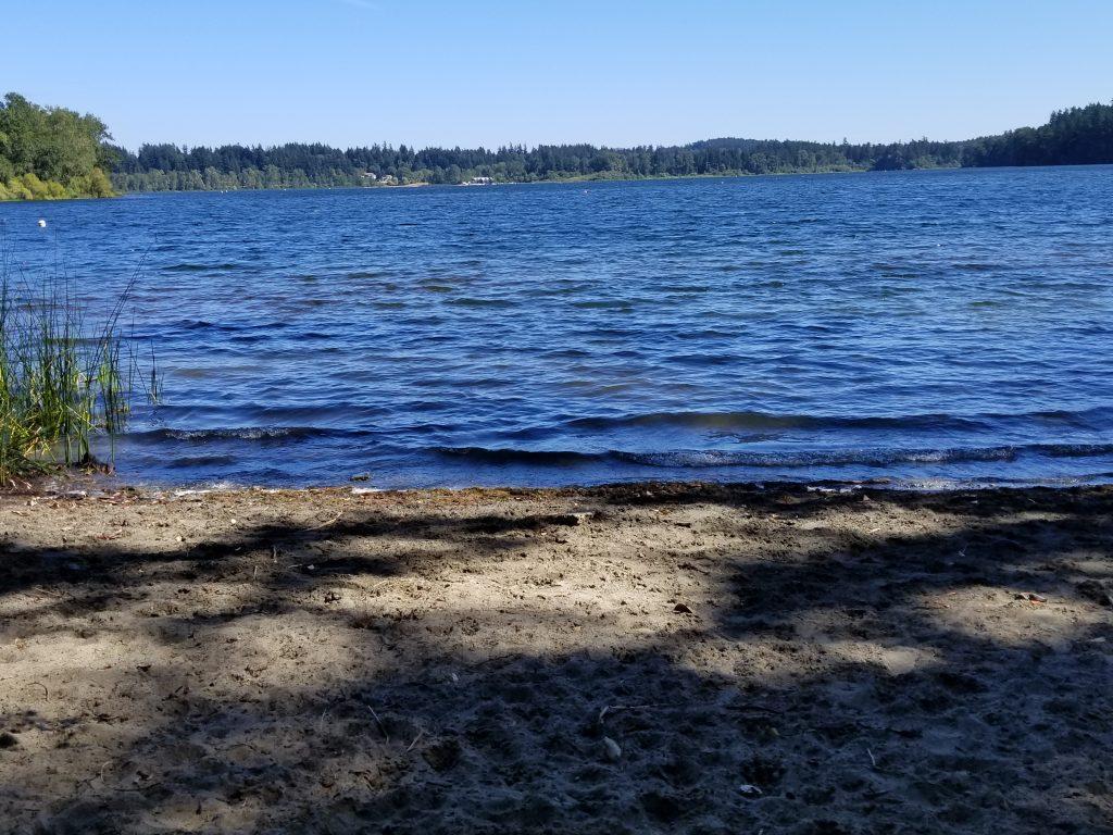 Beaver Lake Regional Off-Leash Dog Park, Victoria, BC