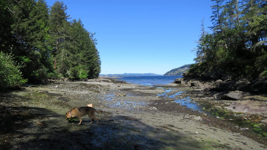 Cable Bay Trail, Nanaimo, BC