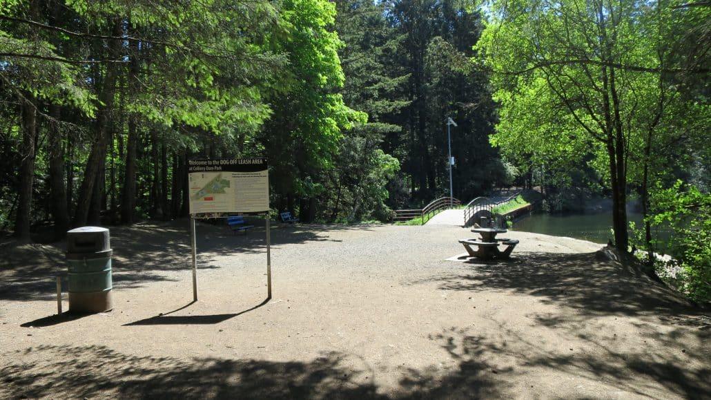 Colliery_Dam_Park_Nanaimo_BC (3)