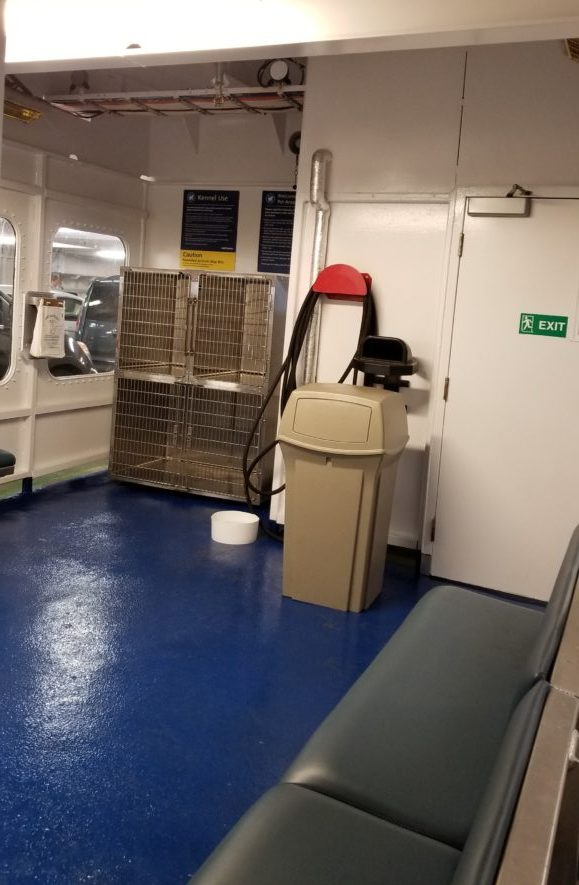 BC Ferries On-Board Dog Area (2)