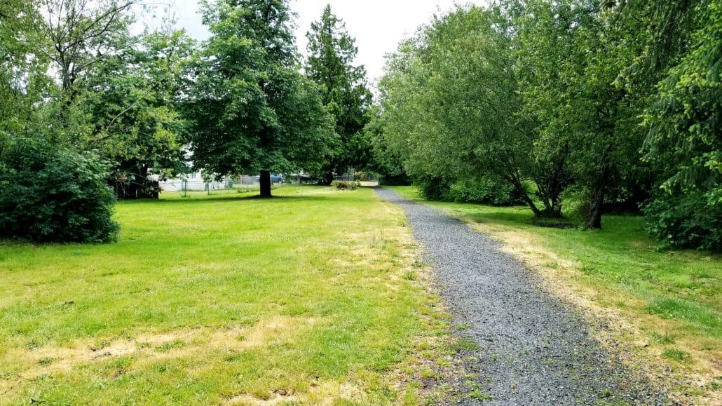 Beaufort Off-Leash Dog Park - Nanaimo - BC (4)