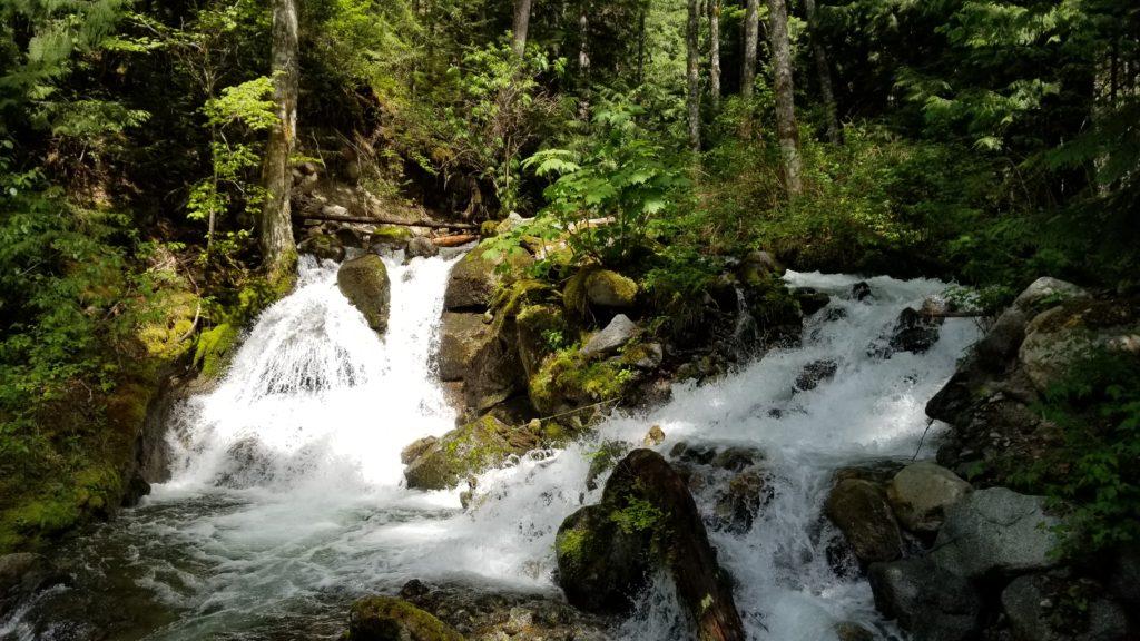 Bosumarne Falls Off-Leash Hike - Fraser Valley - BC (15)