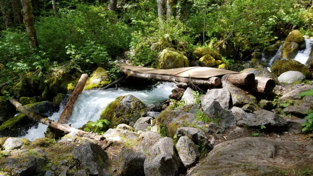 Bosumarne Falls Off-Leash Hike - Fraser Valley - BC (26)