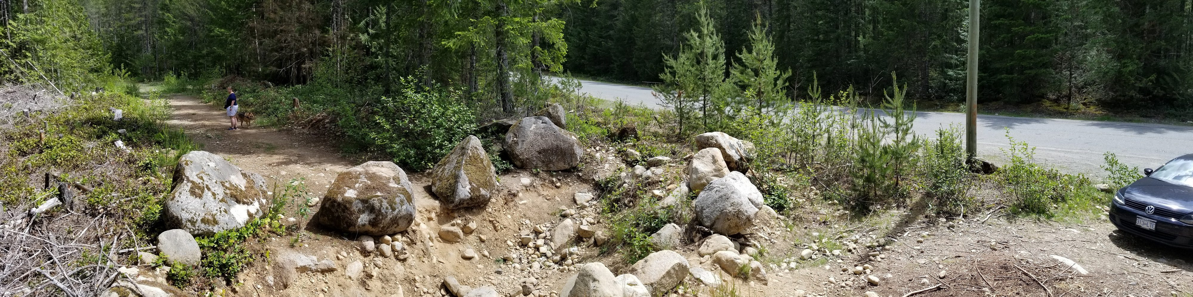 Bosumarne Falls Off-Leash Hike - Fraser Valley - BC (5)