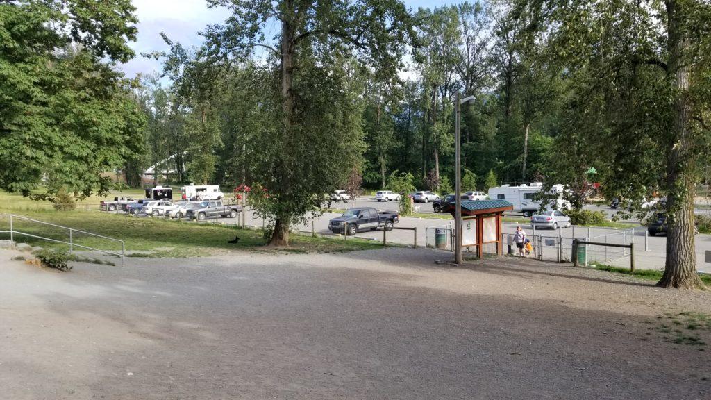 Vedder Park Dog Off-Leash Area_Chilliwack_BC (2)