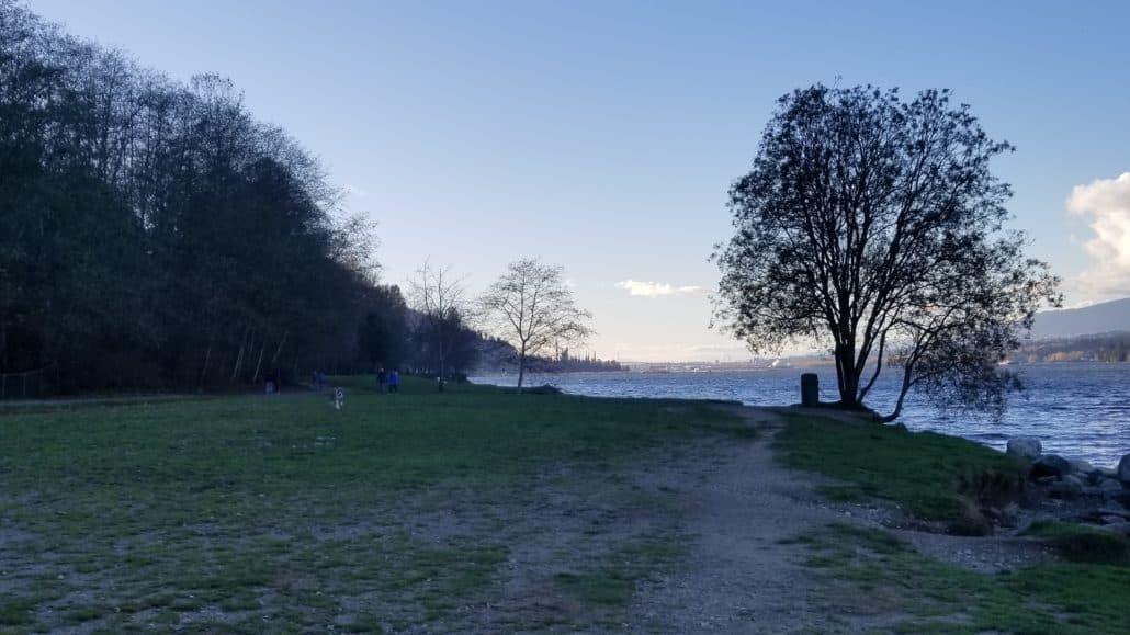 Barnet Marine Park Off-Leash Dog Park - Burnaby - BC (8)