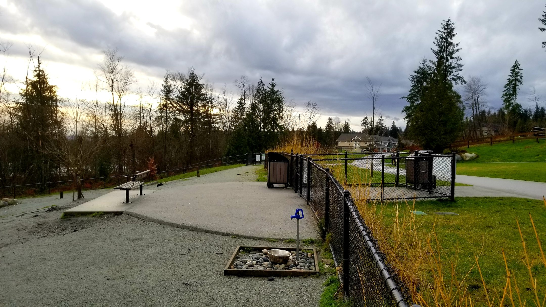 Leigh Park Off Leash Dog Park-Coquitlam-BC (8)