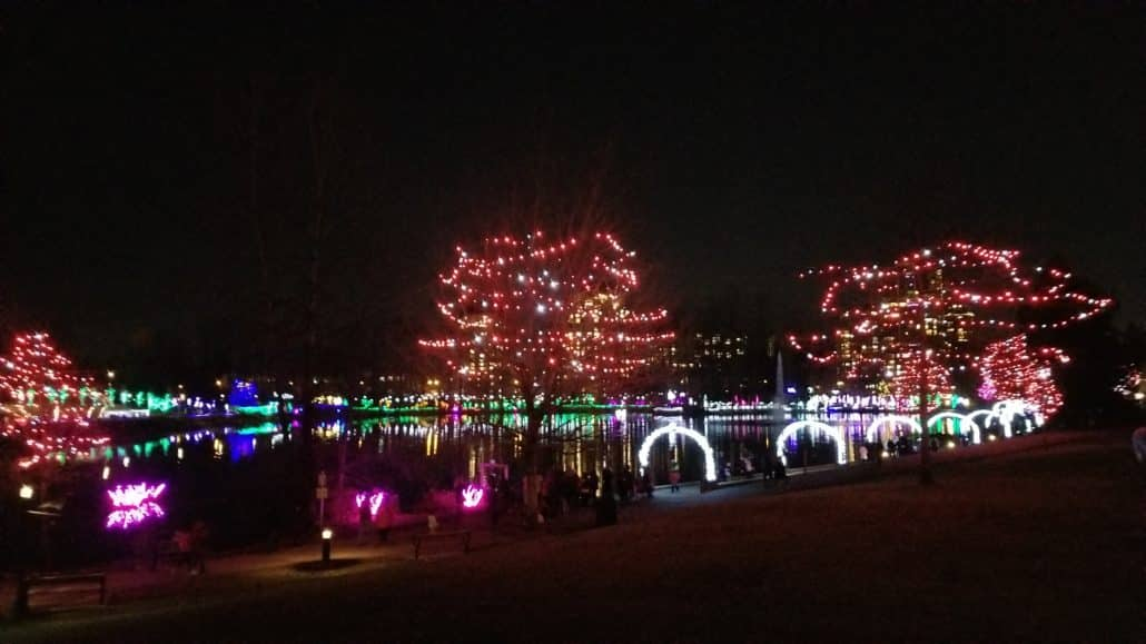 Lights at Lafarge Park, Coquitlam, BC (10)