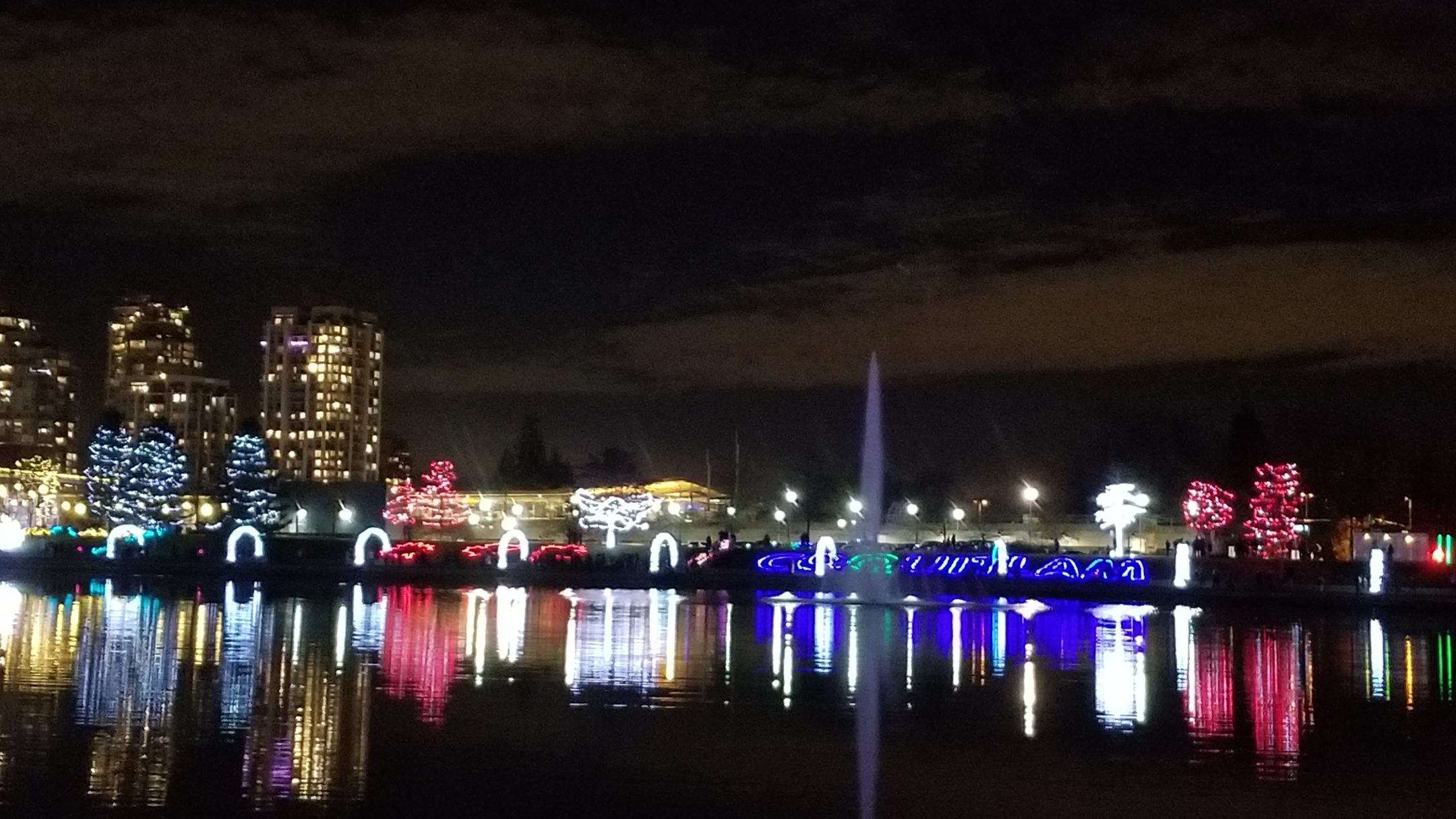 Lights at Lafarge Park, Coquitlam, BC (6)