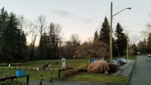 Miller Park Off-Leash Dog Park, Coquitlam, BC (5)