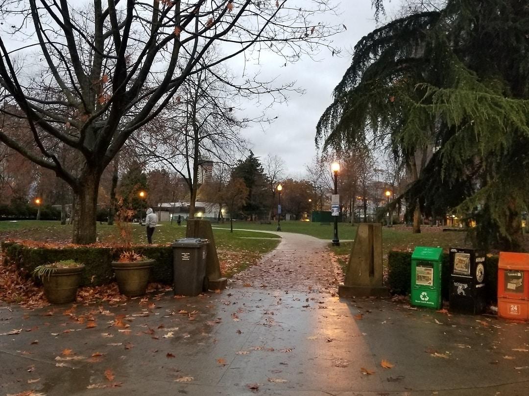 Nelson Park (21)