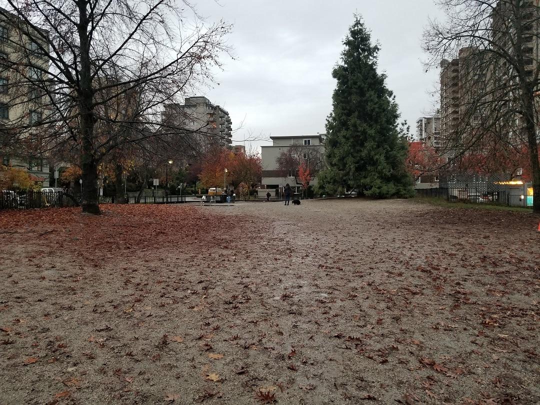 Nelson Park (6)