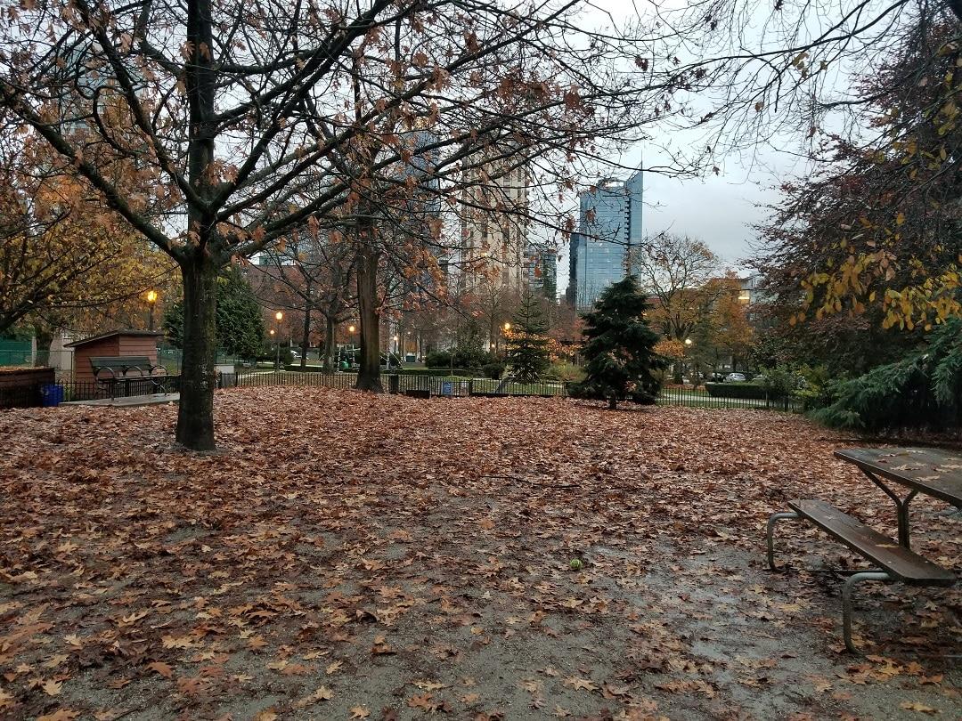 Nelson Park (8)