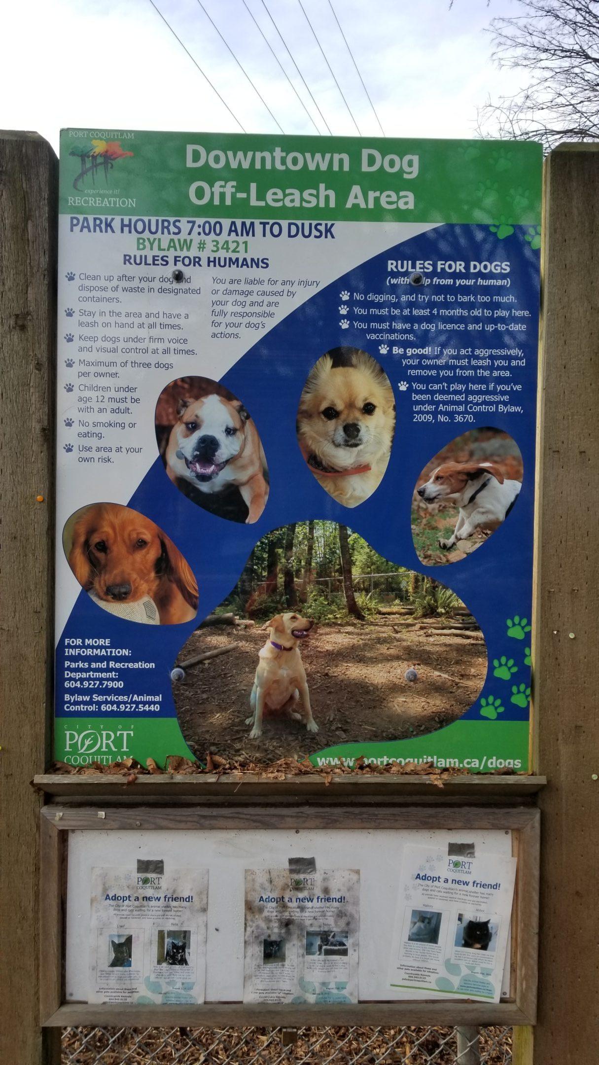 Downtown Port Coquitlam Off-Leash Dog Park – Port Coquitlam – BC (4)