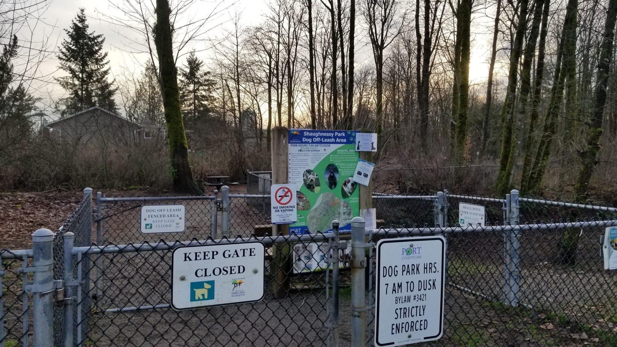 Shaughnessy Park Off-Leash Dog Park - Port Coquitlam - BC (10)
