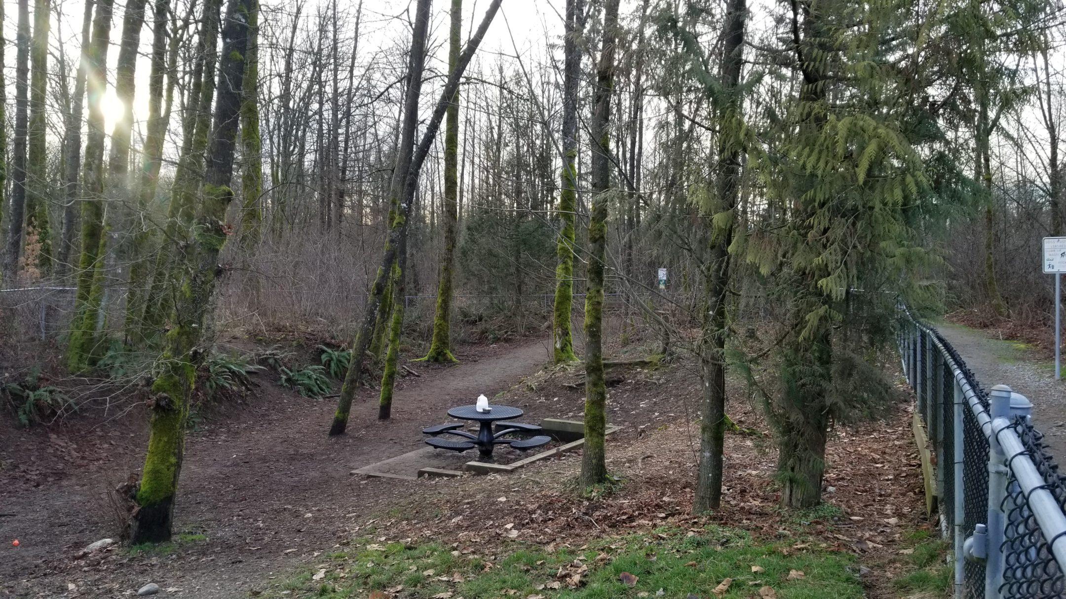 Shaughnessy Park Off-Leash Dog Park - Port Coquitlam - BC (3) - Small Dog Enclosure