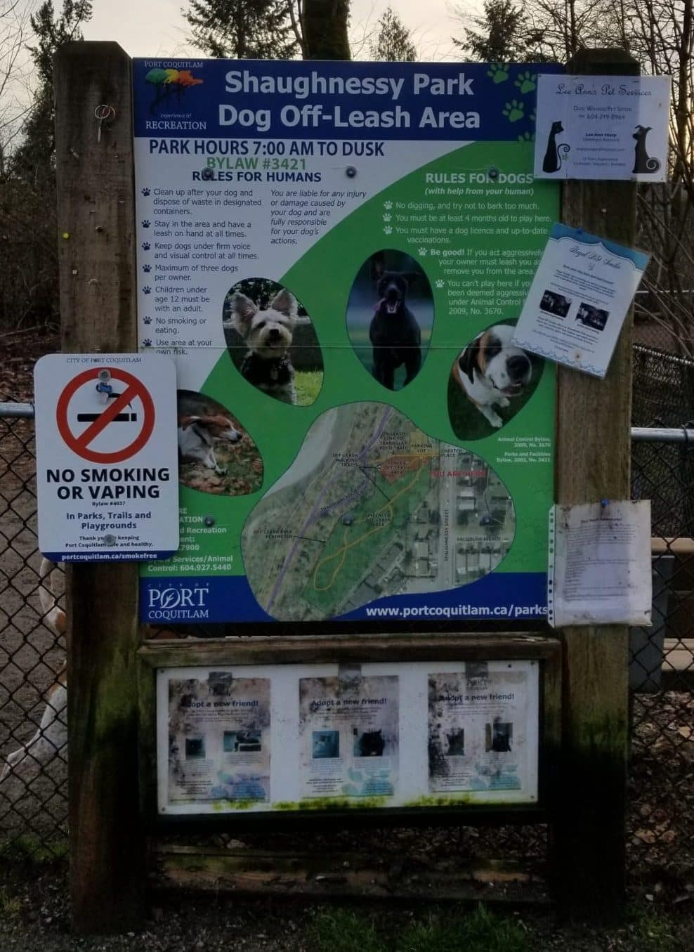 Shaughnessy Park Off-Leash Dog Park - Port Coquitlam - BC (4)