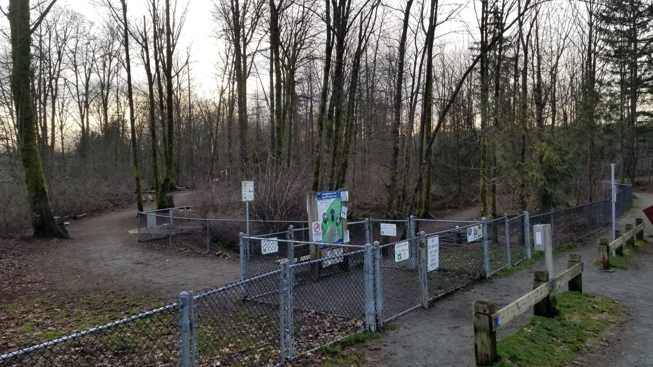 Shaughnessy Park Off-Leash Dog Park, Port Coquitlam, BC