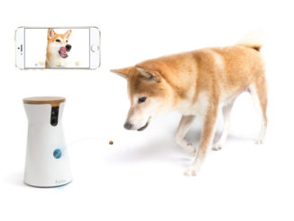 Furbo Pet Camera Tosses a Treat