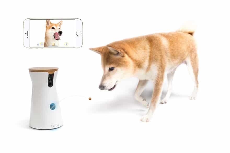Furbo Pet Camera Tosses a Treat