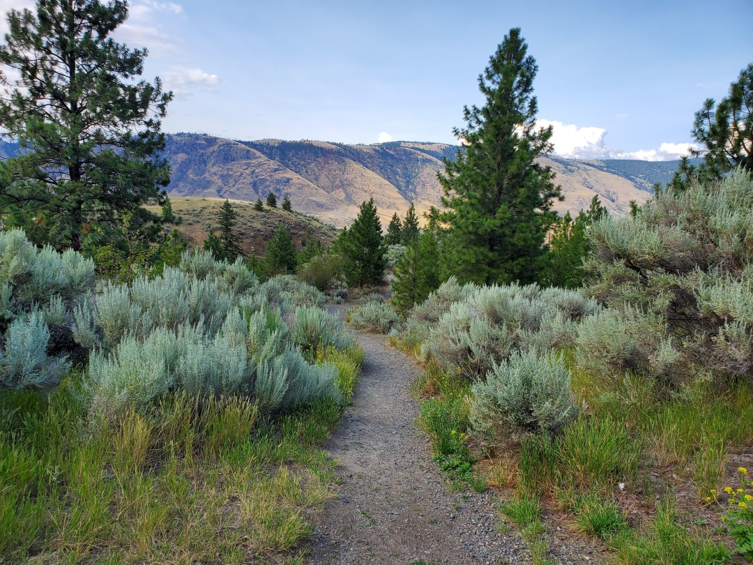 Valleyview Nature Park, Off-Leash Dog Park, Kamloops, BC