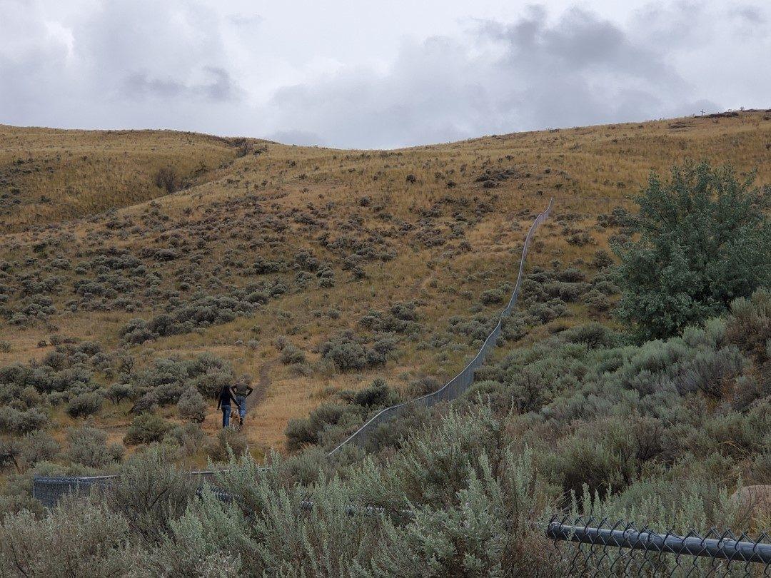Batchelor Off-Leash Dog Park - Kamloops - BC (2)